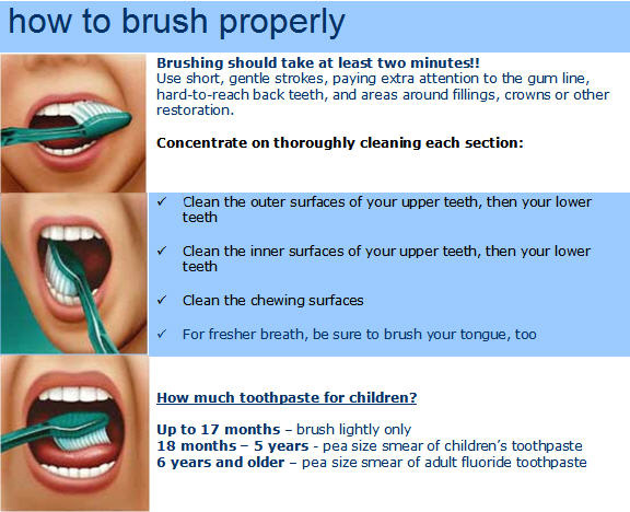 proper way to brush teeth Brushing your teeth the right way matters when you brush too hard you can cause gum recession, notches in your dentin and wear away your enamel all of this damage is permanent but largely preventable.